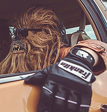 Wookies In Real Life: A Day In The Life Of A Wookie [10 Pics]