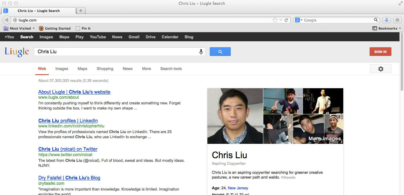 Creative Resume That Looks Like A Google Search Results Page