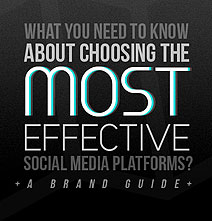 Choose The Best Social Media Platforms For Your Brand [Infographic]