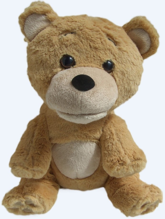 talking-supertoyteddy-bear