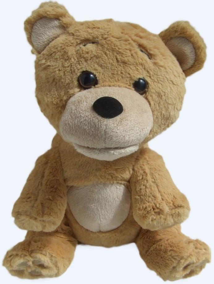 talking-supertoyteddy-bear