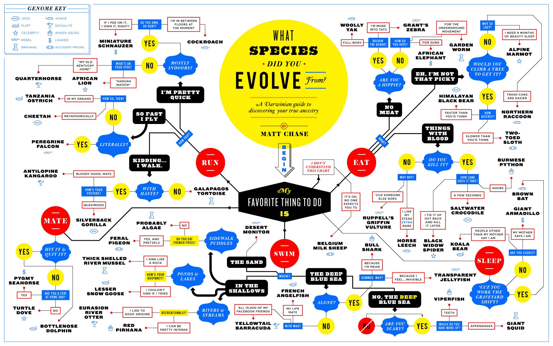 Discover Your Ancestry: What Species Did You Evolve From? [Flowchart]