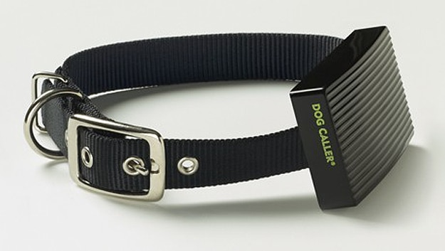 Dog Collar Messages Owner If Temperature In Car Is Dangerously Hot