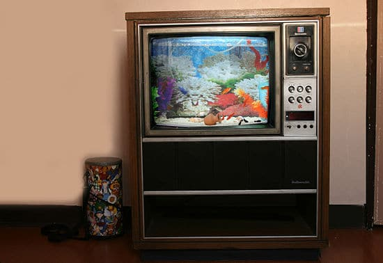 retro-television-set-fish-tank