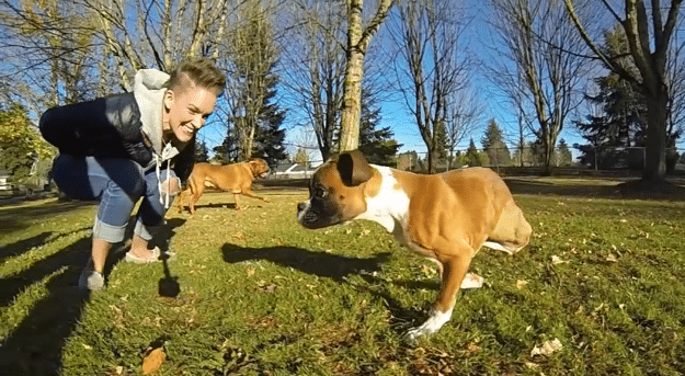 Duncan: The Two-Legged Dog That Conquered All Odds