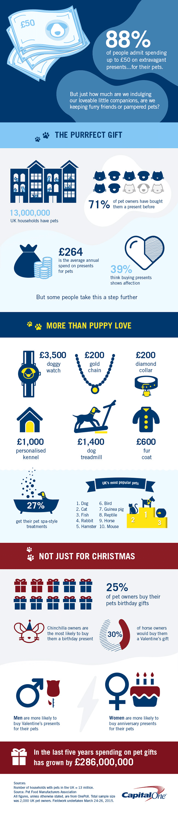 Pampered Pets Luxury Gifts Infographic