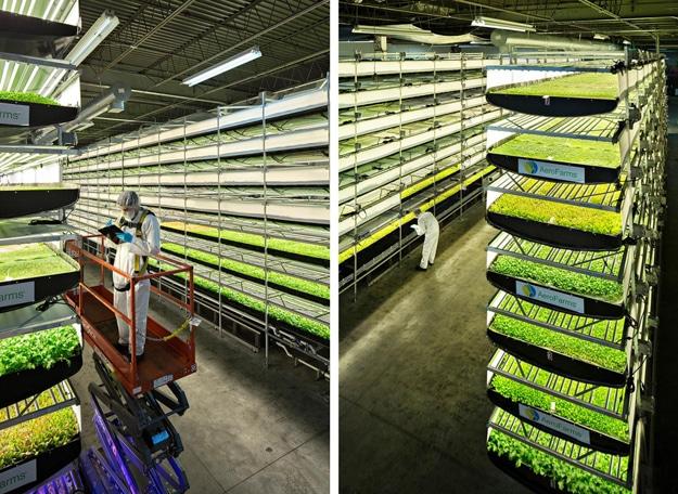 AeroFarms Newark Vertical Farm