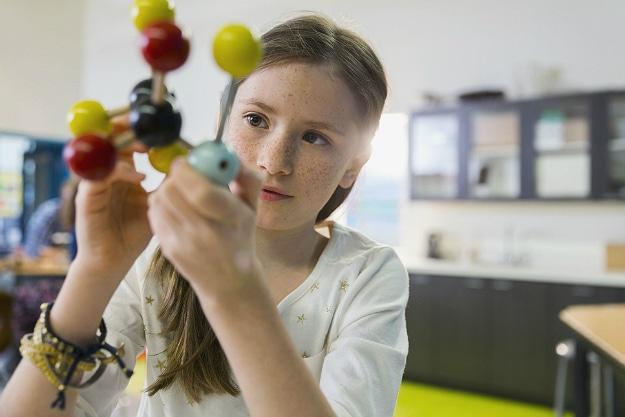 Cognitive Development Kids Research