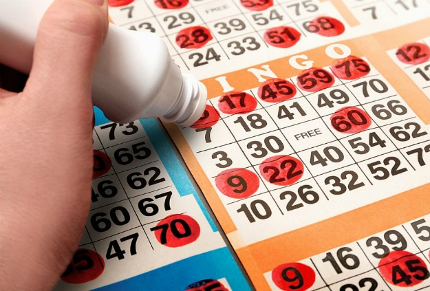 Bingo History Future Timeline
