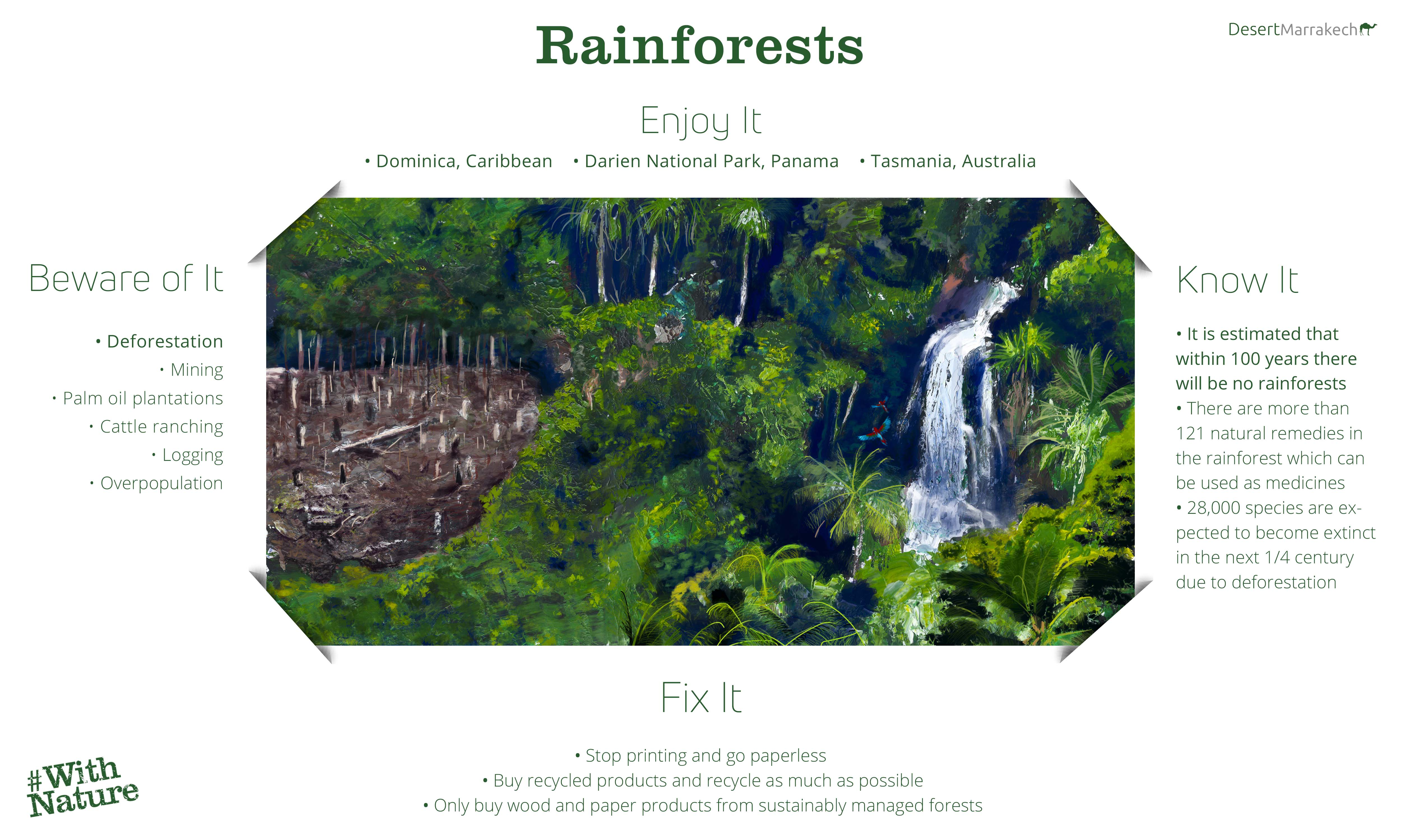 World Environment Day Rainforests Infographic