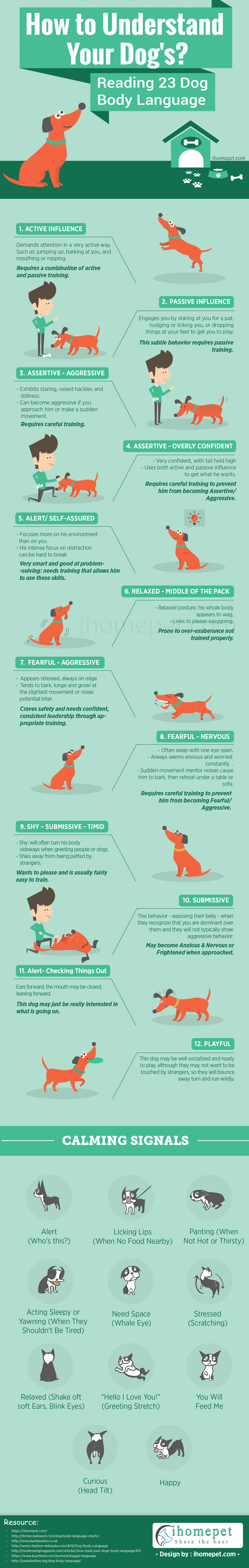 Understand Your Dog – Read 23 Dog Body Language Cues [Infographic]