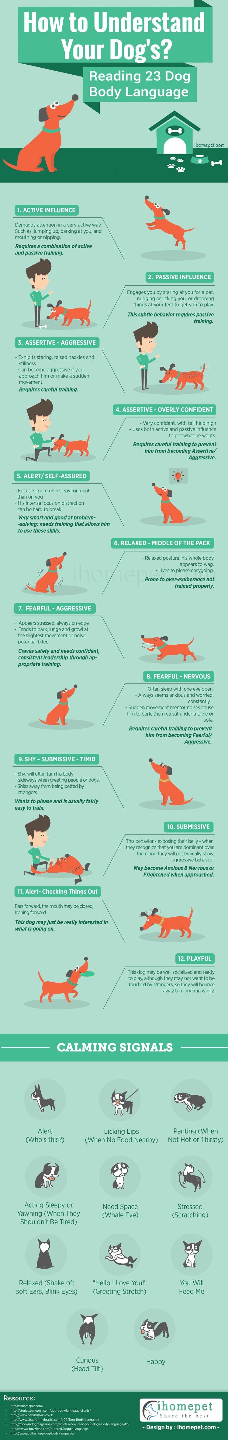 Understand Dog Body Language Infographic