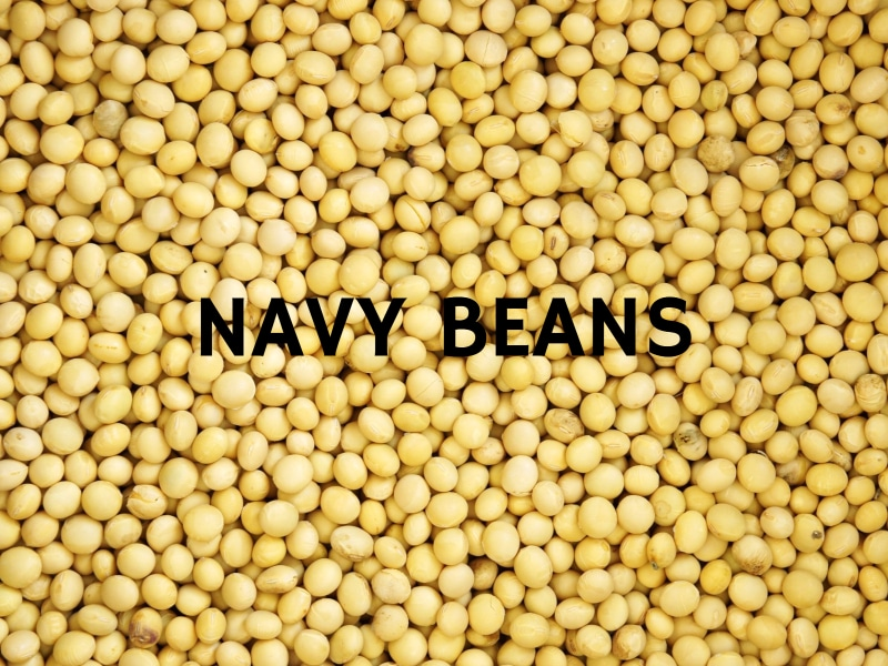 6 Natural Fat Burners Navy Beans