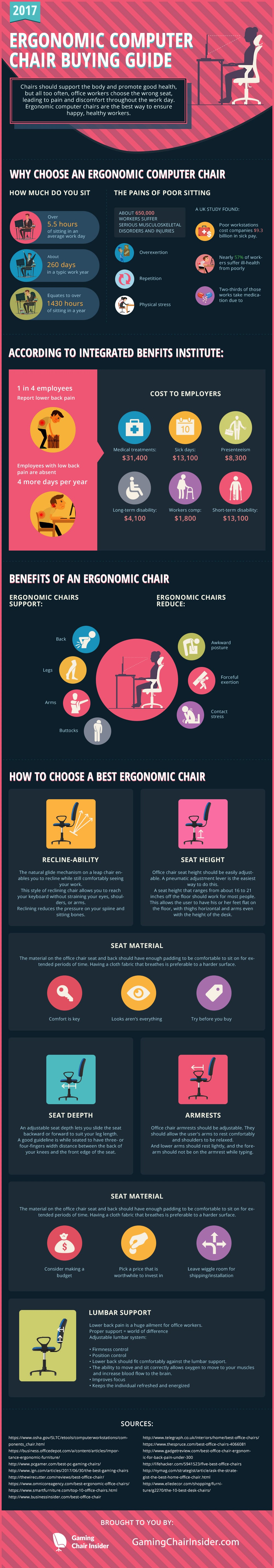 Ergonomic Office Chairs Guide Infographic