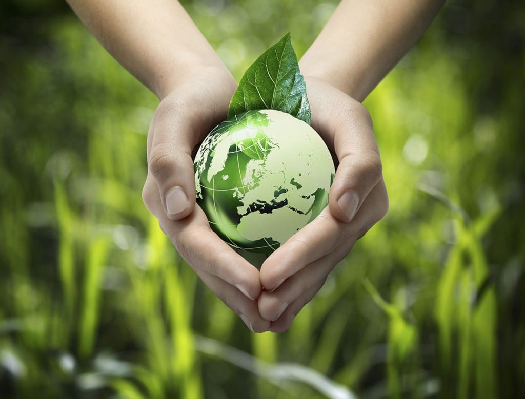 Five Ways To Create An Eco-Friendly Production Company