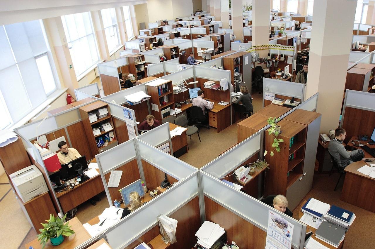 Labor Market Demands Article Image