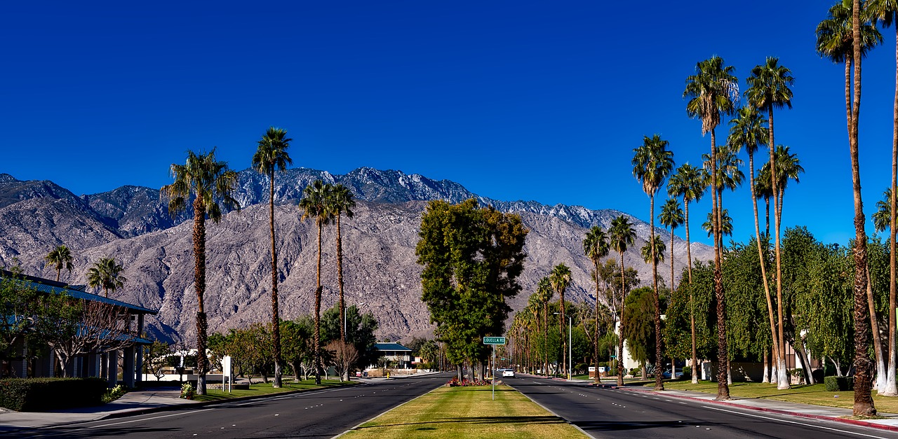 California Road Trip Palm Springs Article Image
