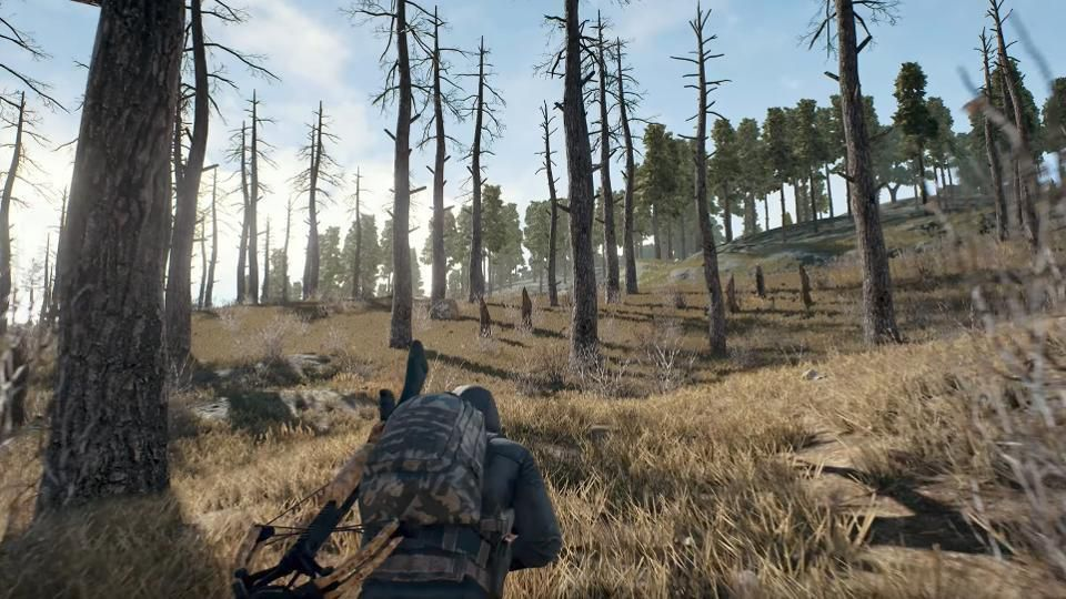 PUBG Player Types Article Image