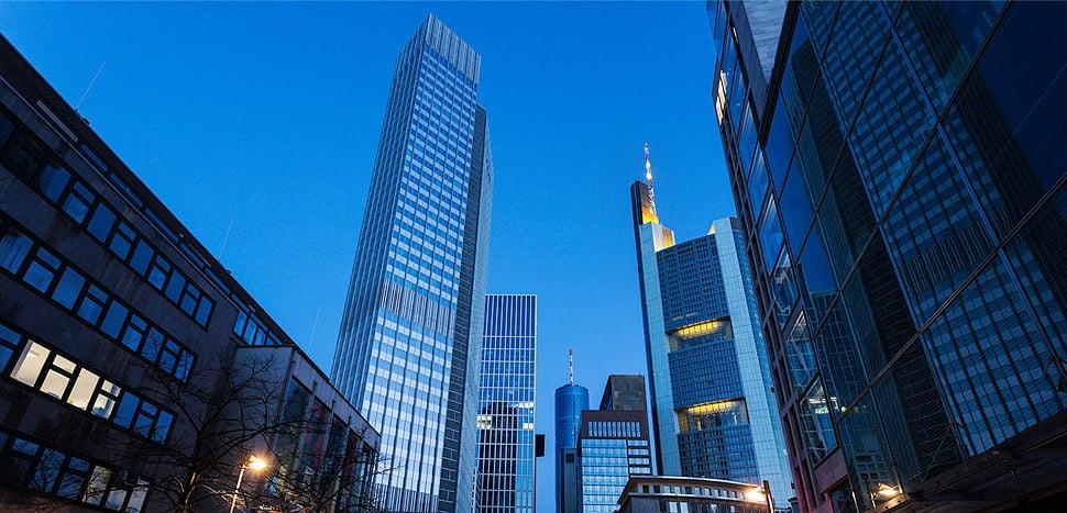 Wellington Capital Group Tokyo, Japan [Review]
