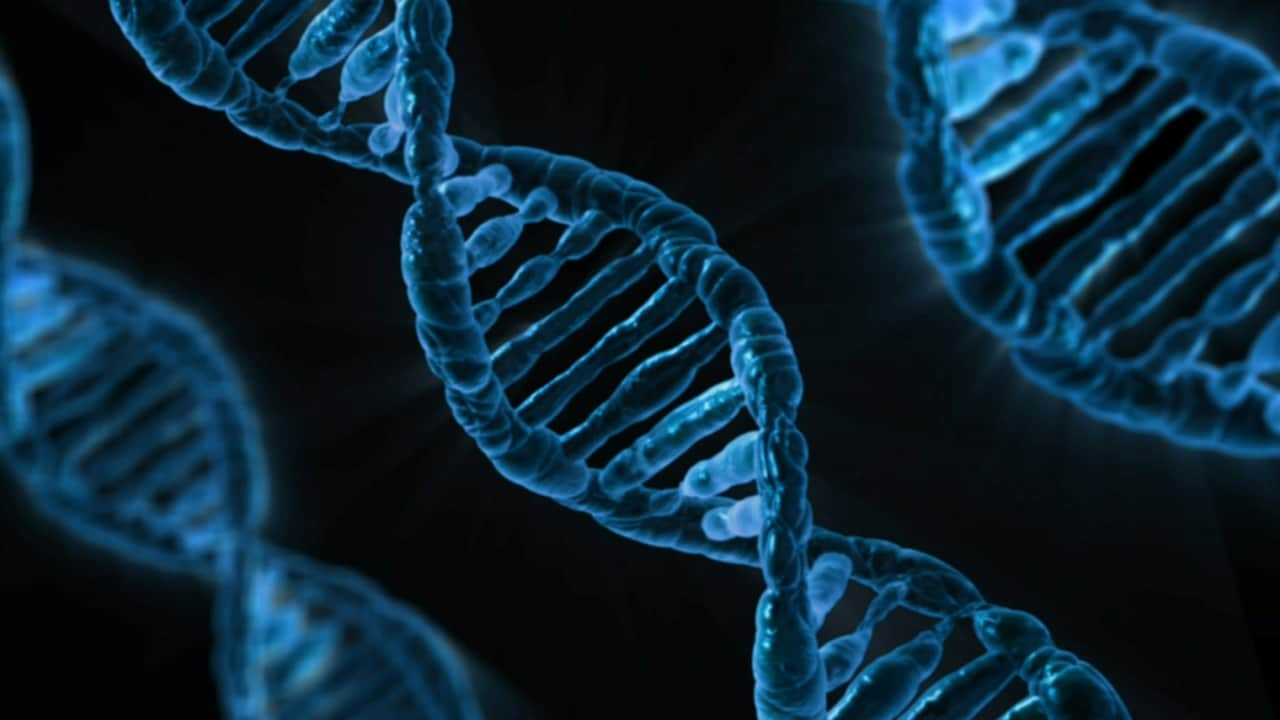 5 DNA Tests Tips Header Image