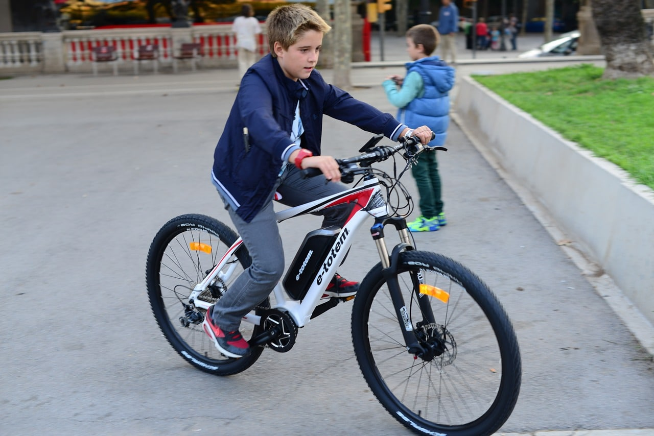 Electric Bikes Facts Article Image