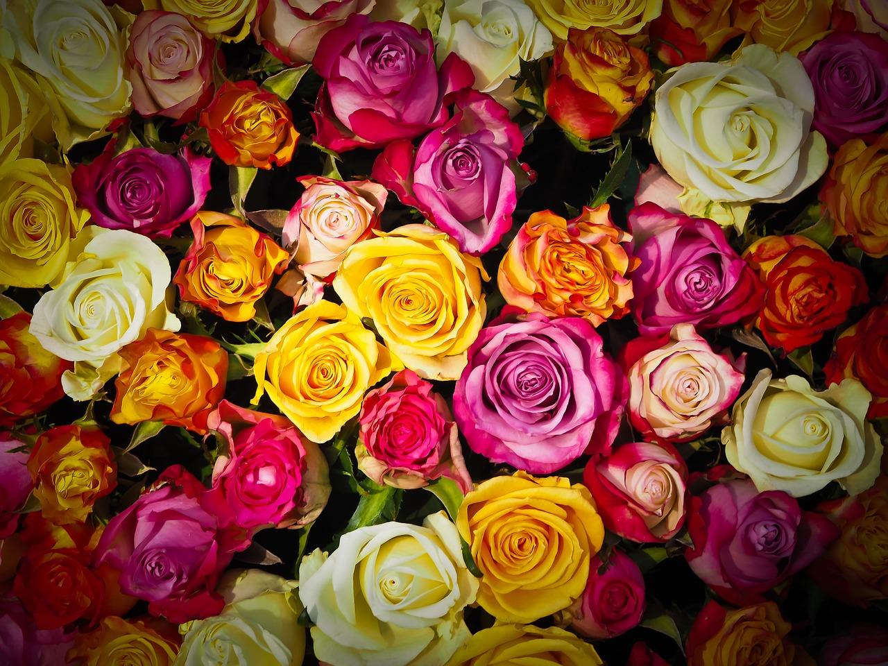 6 Benefits Of Shopping At International Online Florist Store