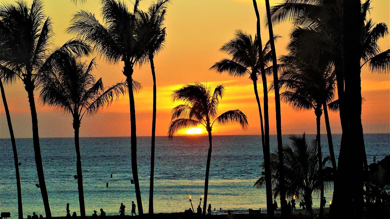 Must-Visit Maui Header Image