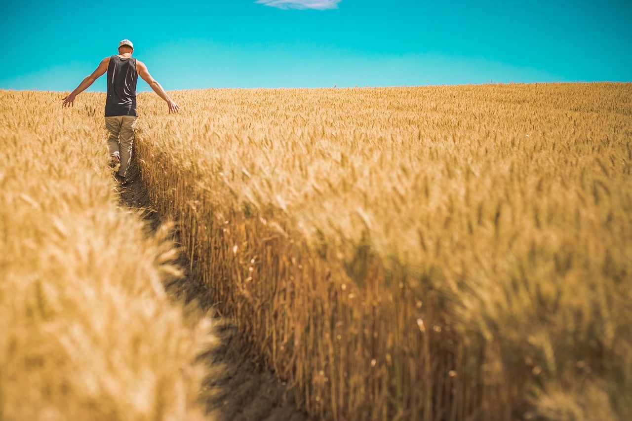 Sustainable Living Farming Header Image