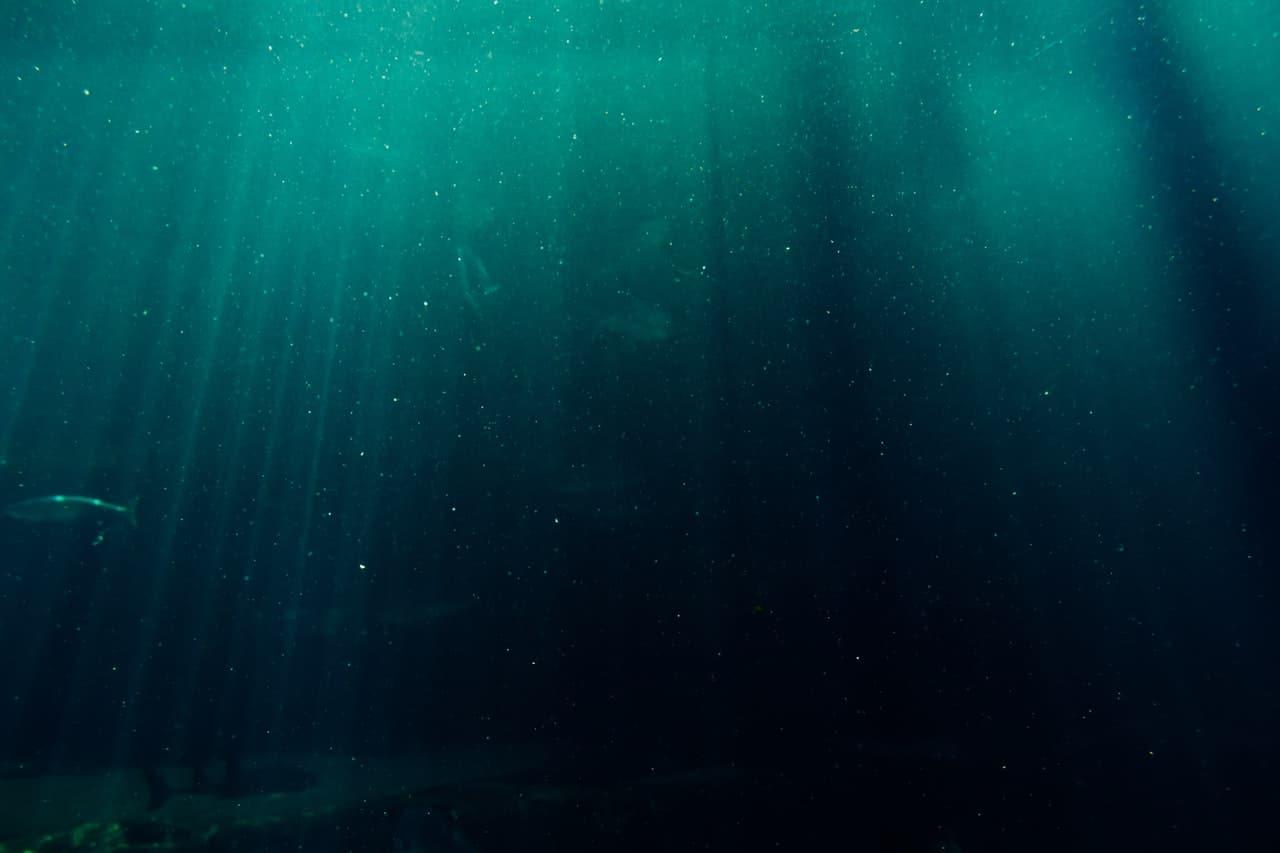 Deep Sea Fishing Dubai Header Image