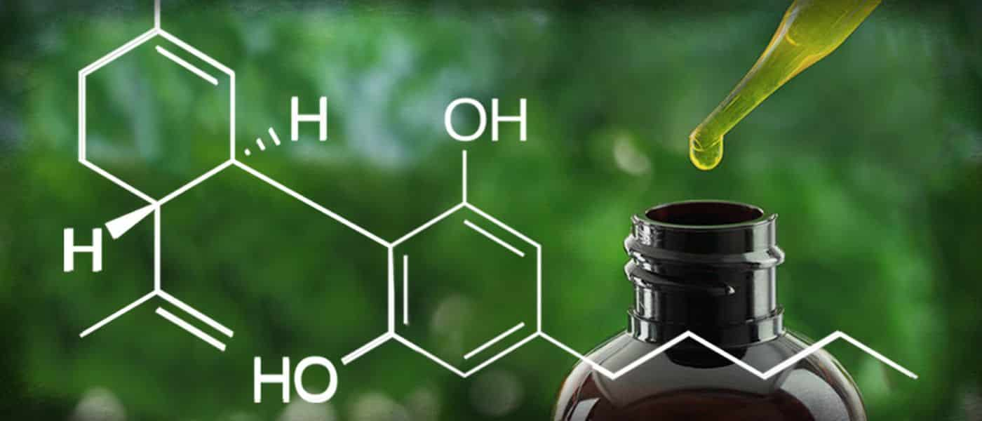 CBD Oil – Is It Really Healthy?