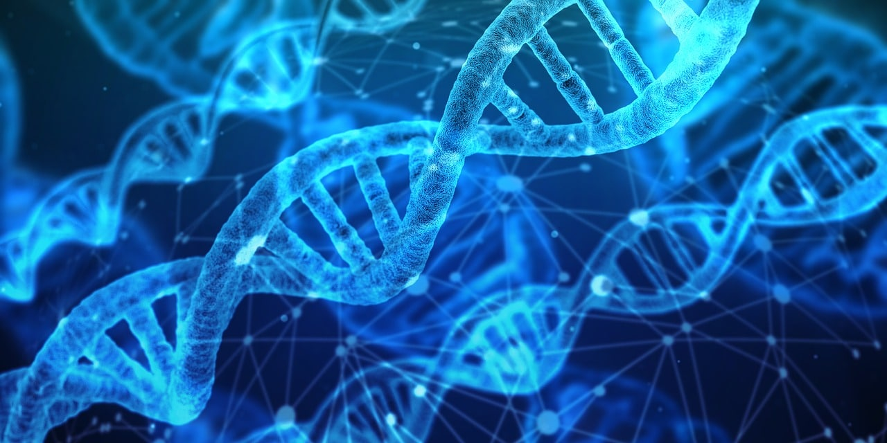 DNA Testing Home Header Image