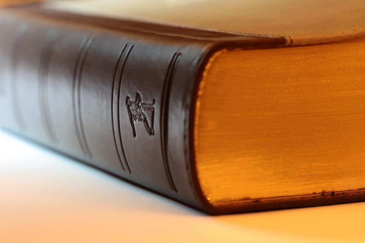 Gambling Law Essay Article Image