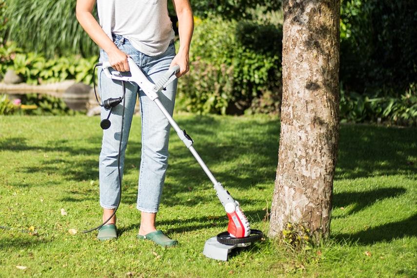 Top Garden Tools 2019 Article Image