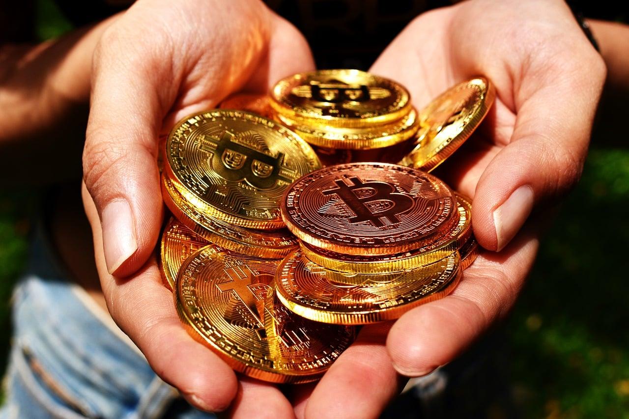 Bitcoin Bull Run Article Image