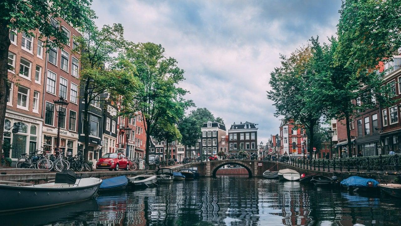 Netherlands Starting Business Header Image