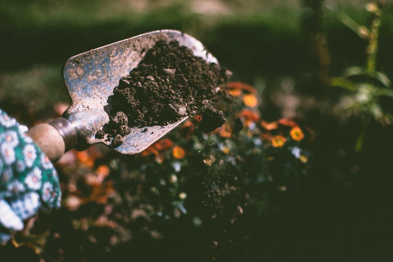 10 Gardening Tools Header Image