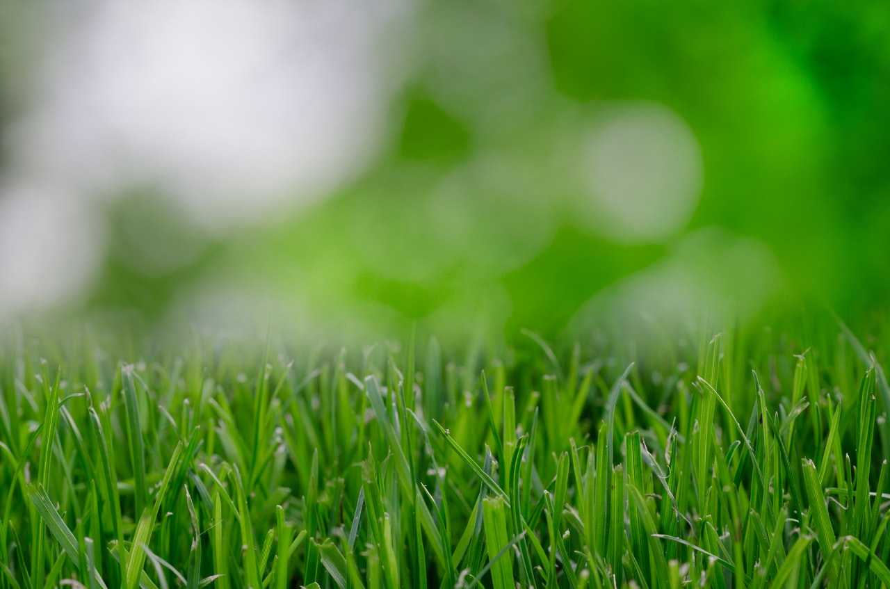 6 Marketing Ideas Lawn Mowing Header Image