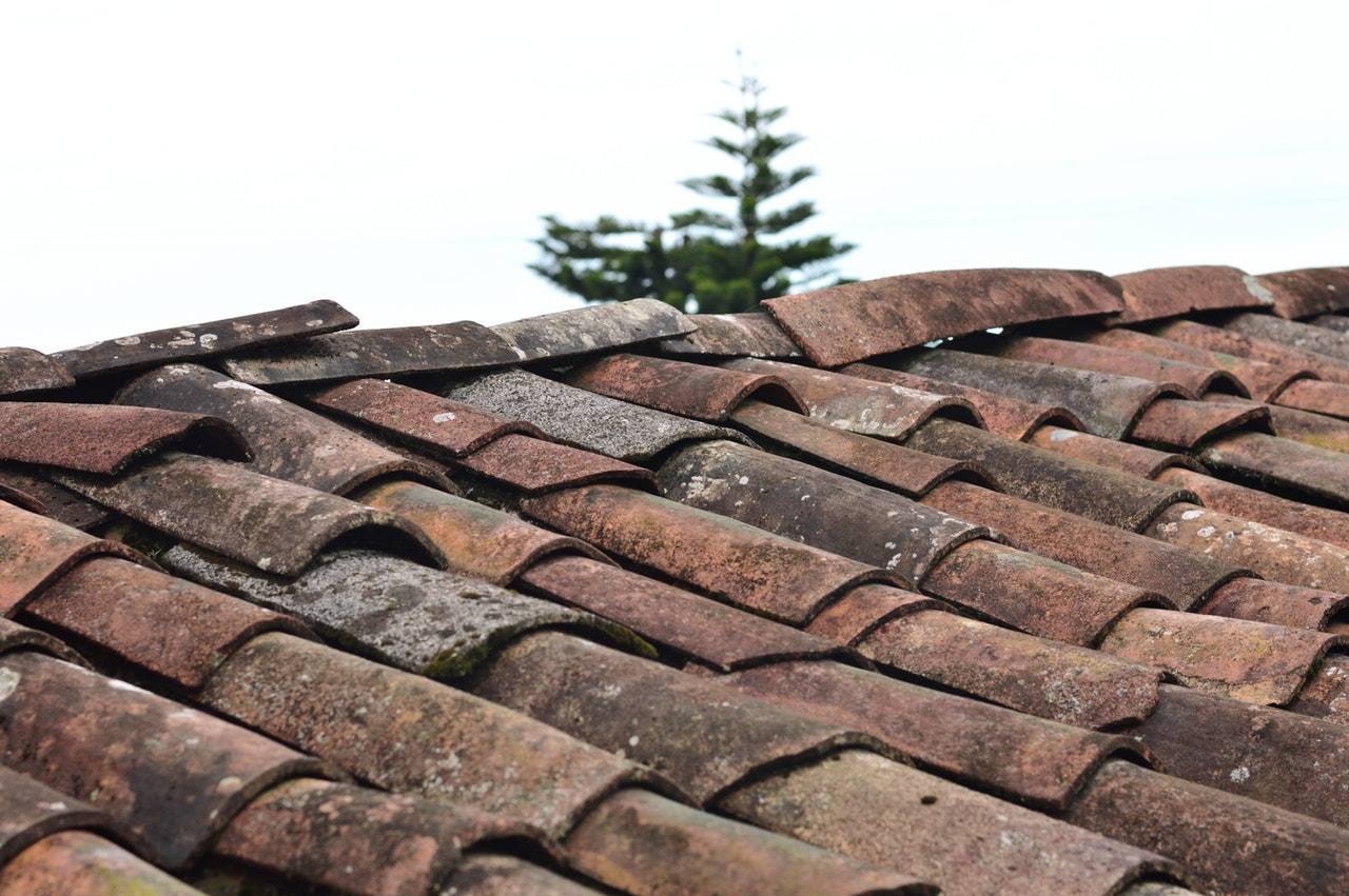 The Four Main Causes Of Roof Damage You Need To Note