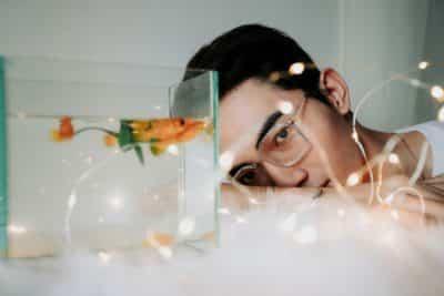 Aquarium In Room Benefits Image1