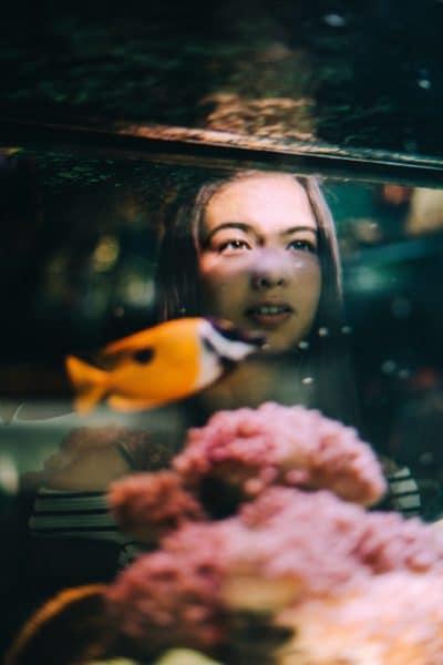 Aquarium In Room Benefits Image2