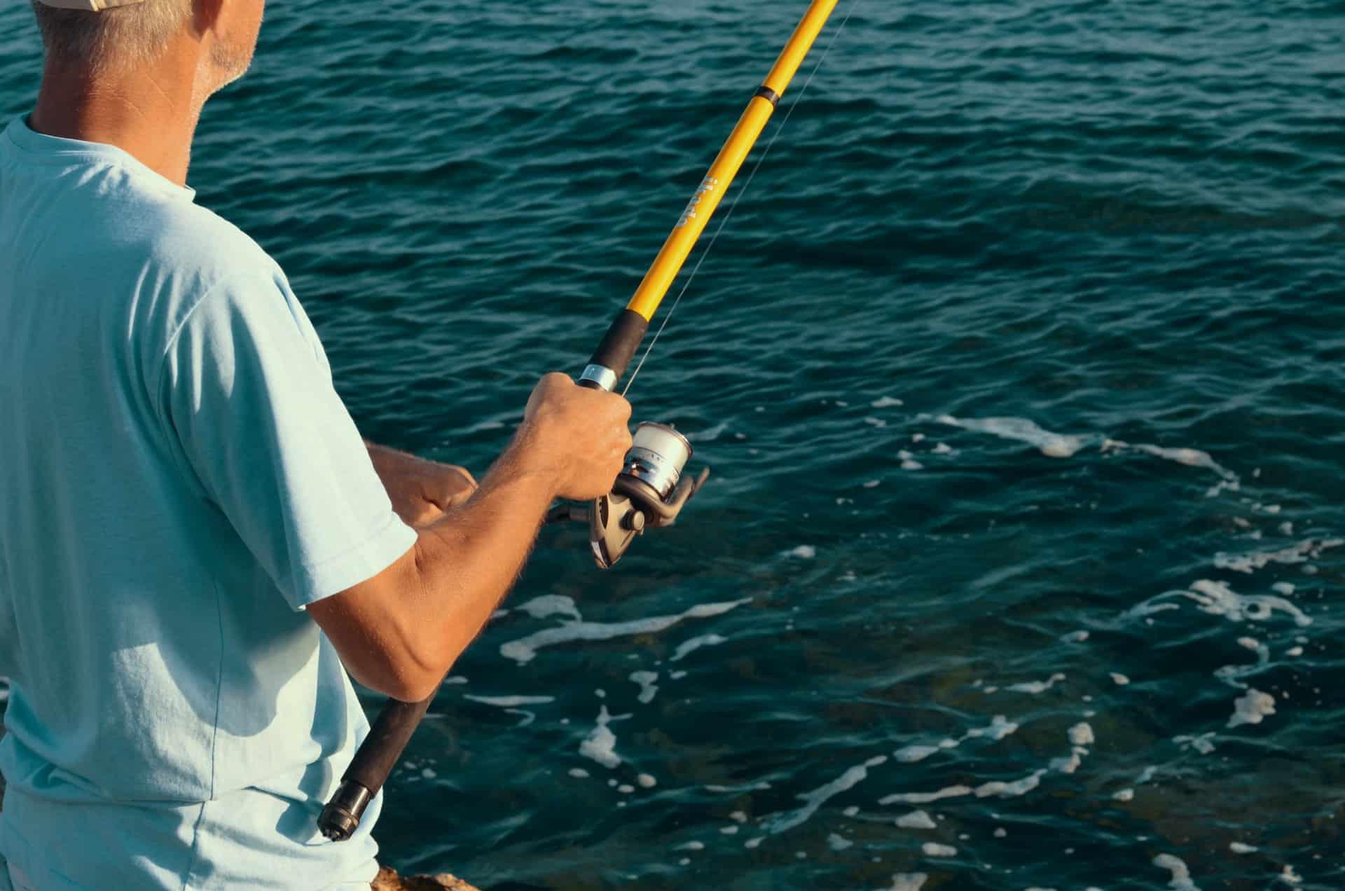 Fish Need Prepare Header Image