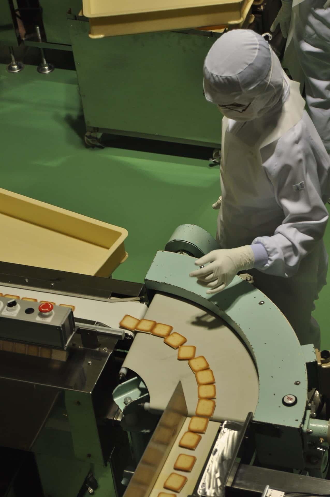 Types Conveyor Belts Article Image