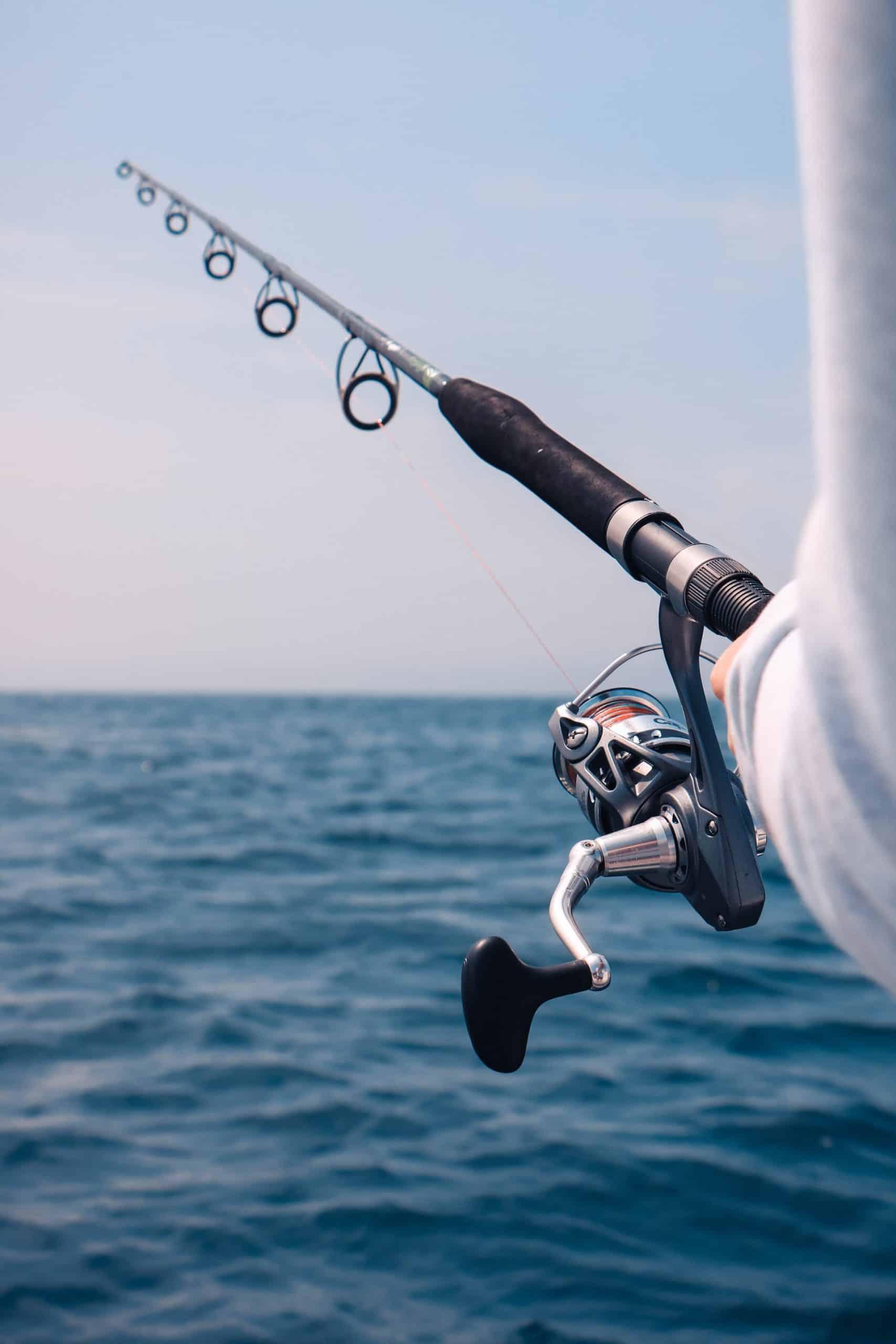 Types Fishing Reel Article Image