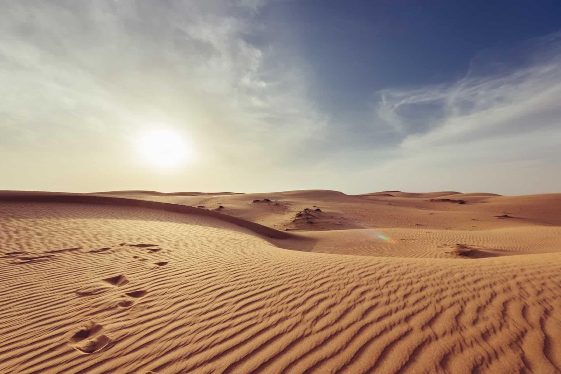 Desert Trip 2020 Header Image