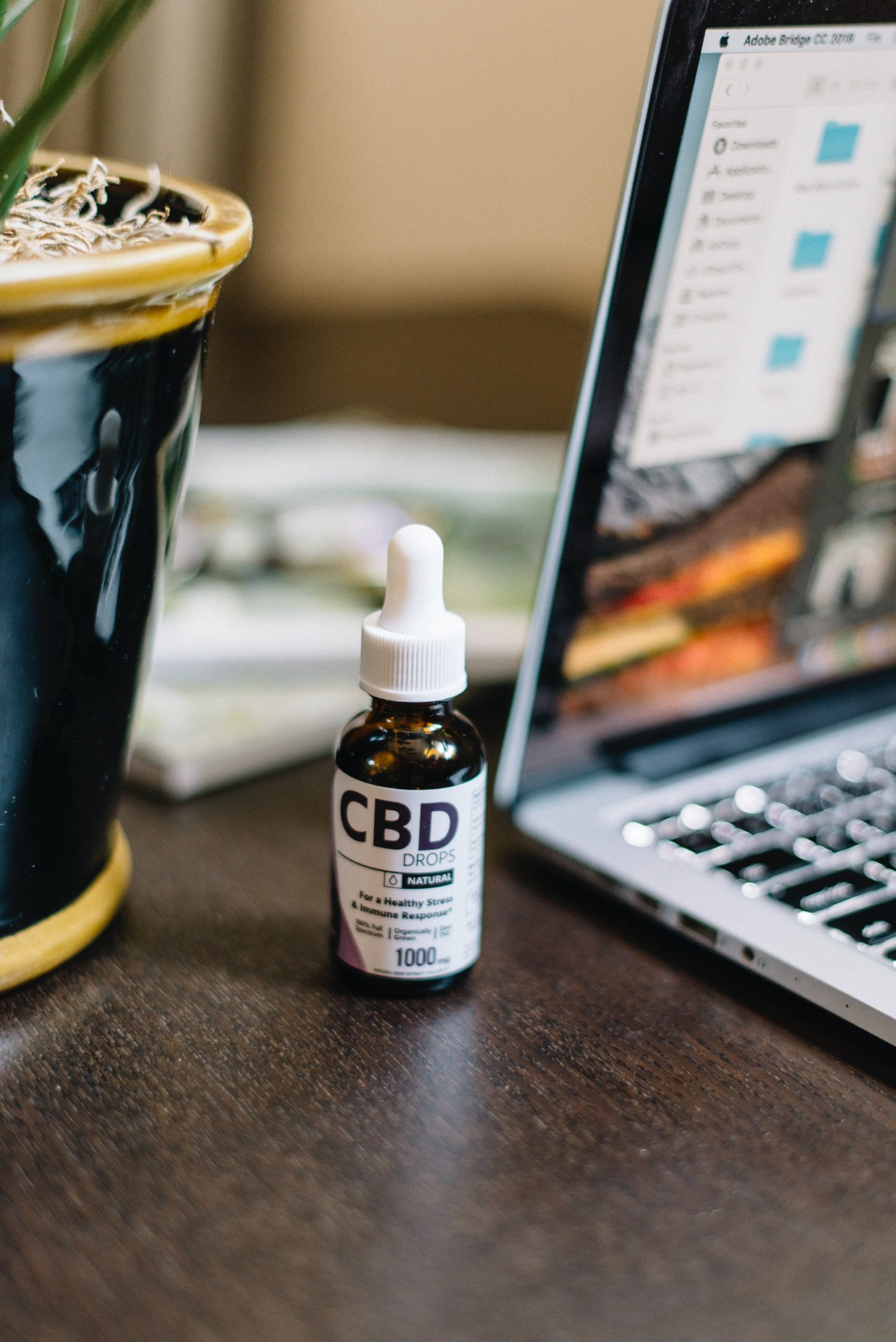CBD Oil Uses Benefits Effects Article Image