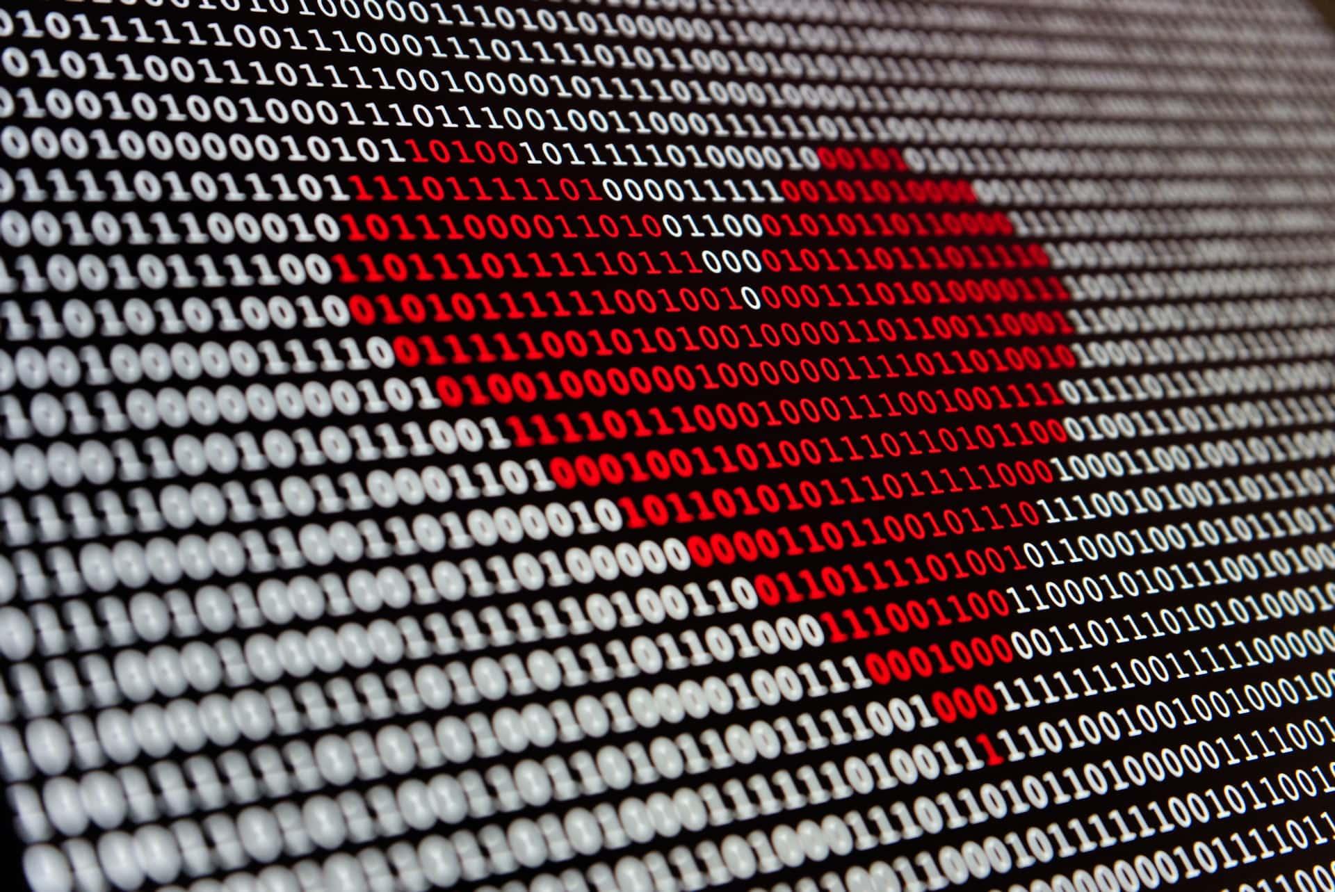 Dating Startup Success Stories Header Image