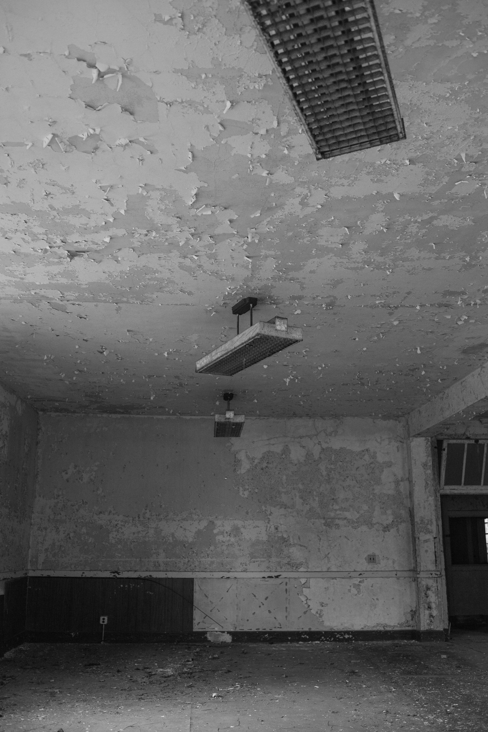Commercial Mold Remediation Article Image