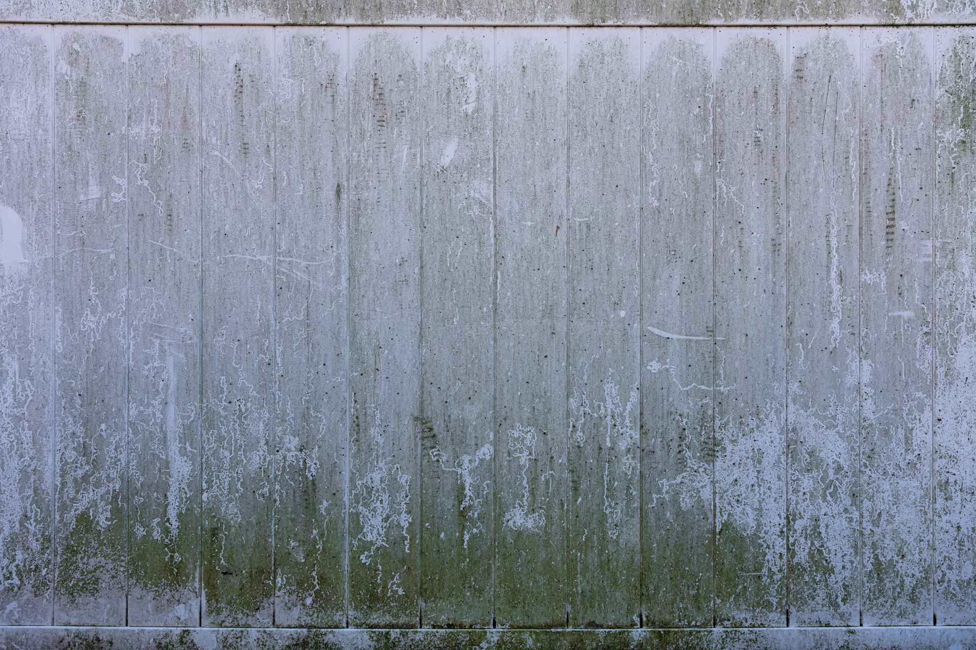 Commercial Mold Remediation Header Image