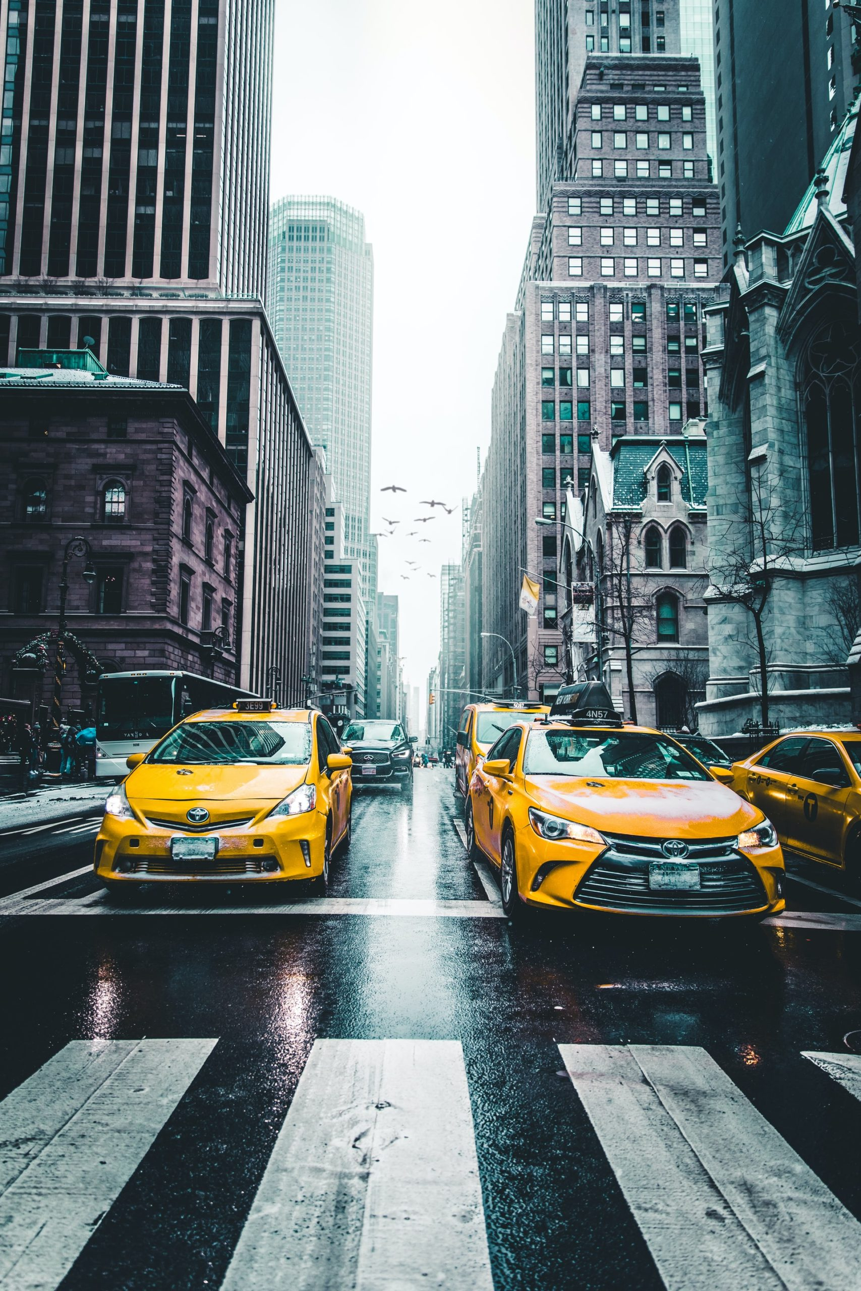 Benefits Taxi Services Article Image