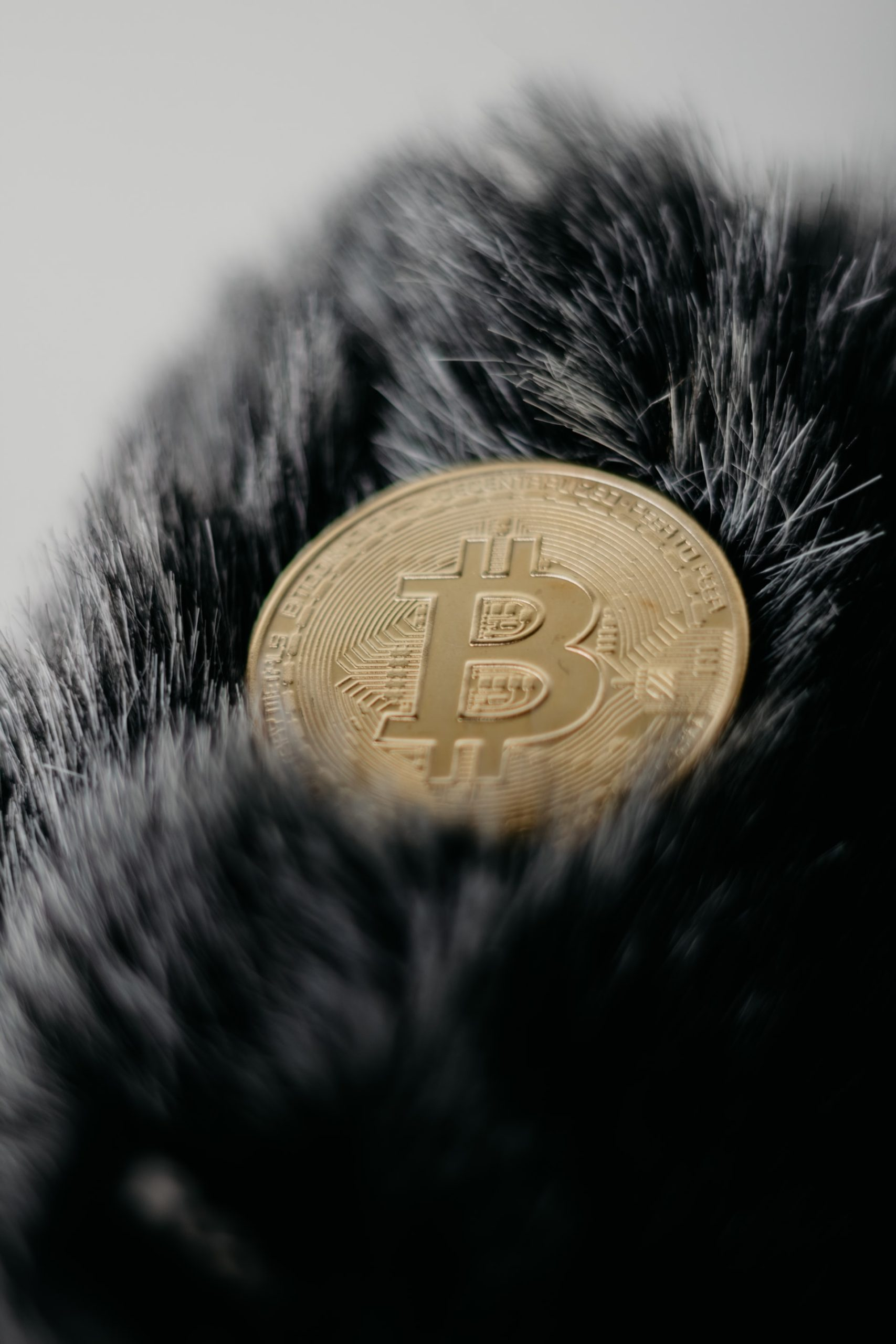 Why Bitcoin Value Article Image
